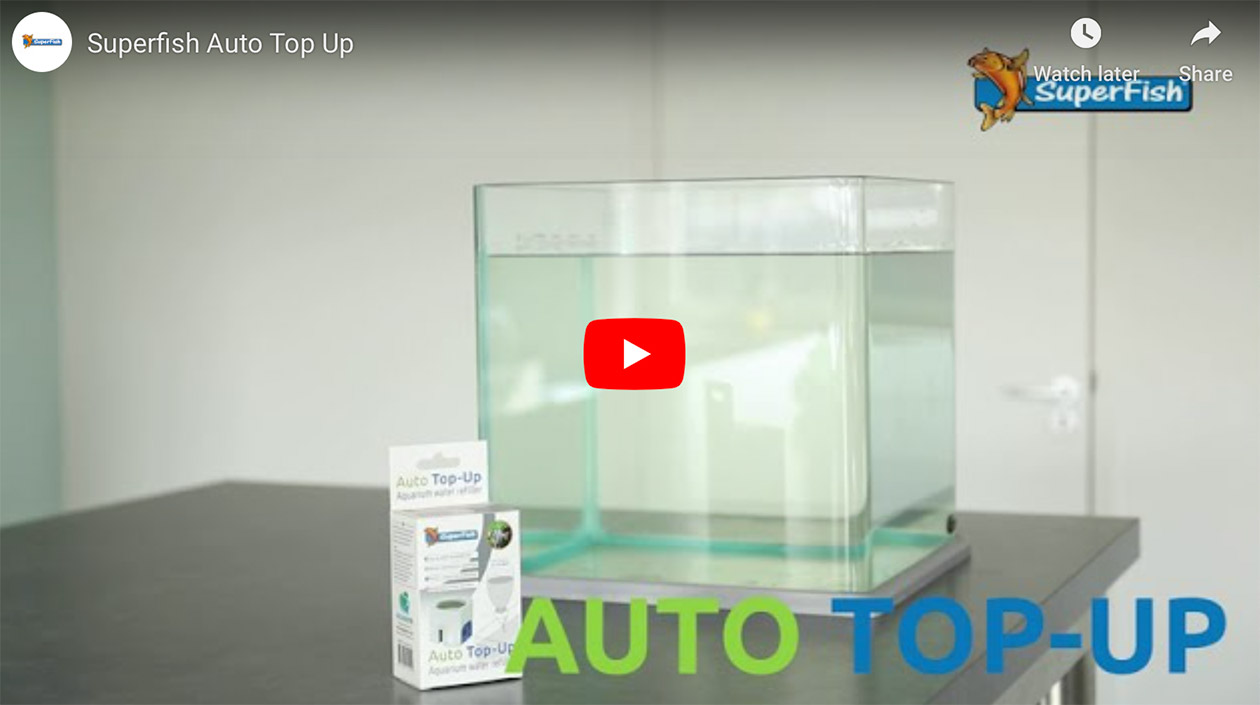 Video Thumbnail of the SuperFish Auto Top Up